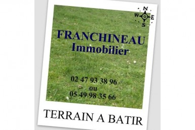 1008981-CABINET-ALAIN-FRANCHINEAU-angliers-VENTE